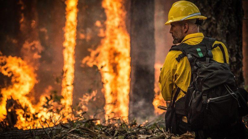 Incendios en AustraliaLos incendios continúan arrasando Australia: os contamos las causas y consecuencias