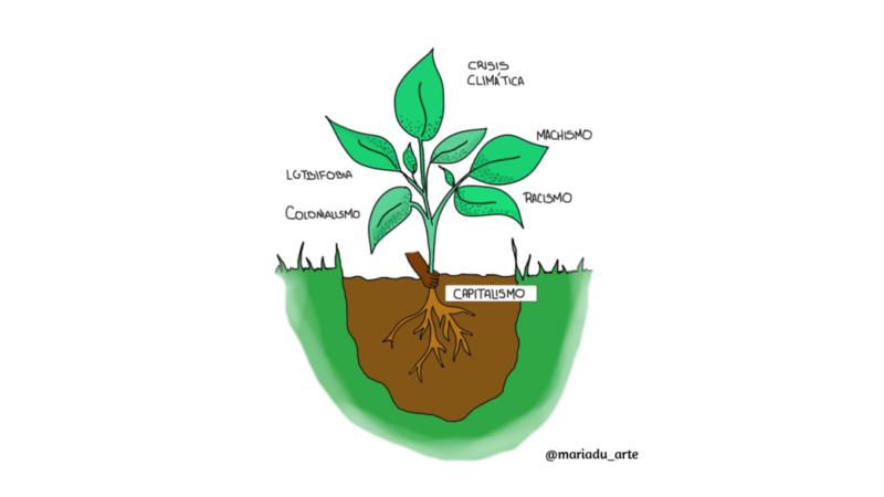 Una planta y sus raíces