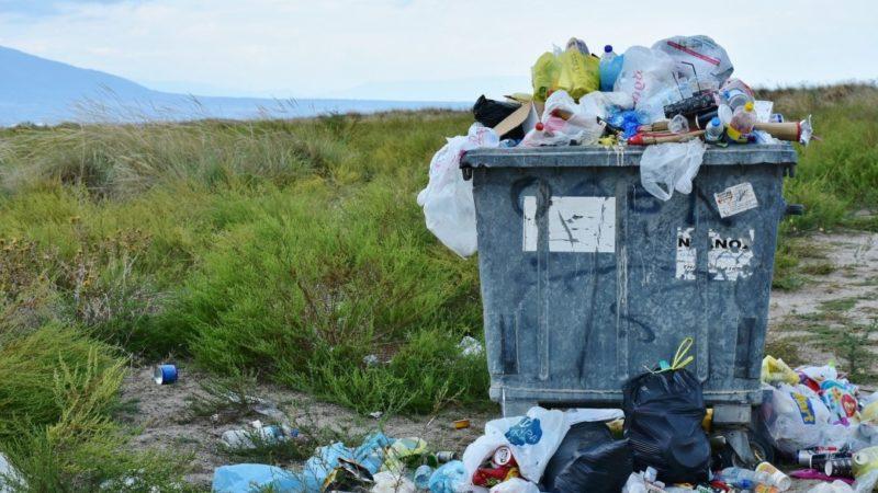 Día Mundial del Medio AmbienteLucha ecologista contra el plástico en plena pandemia del coronavirus